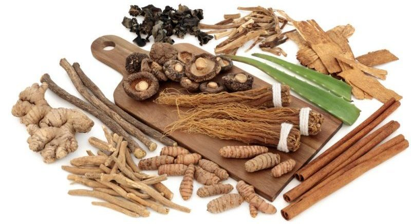 Adaptogens – Get Ready – Get Set – ADAPT