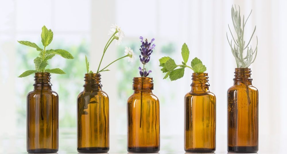 Inquiring Minds Want to Know…About Essential Oils (EO)